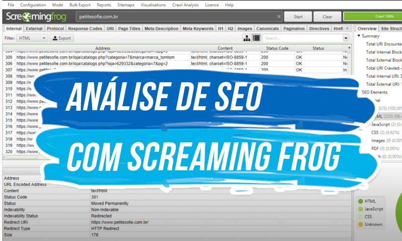 Análise de SEO com Screaming Frog